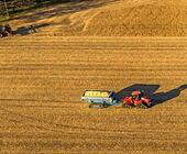 Fonte della foto: AgrifoodToday