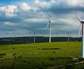 Fonte della foto: Rinnovabili.it