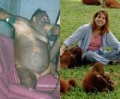 Fonte della foto: Il Primato Nazionale