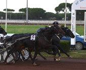 Fonte della foto: Cavallo Magazine