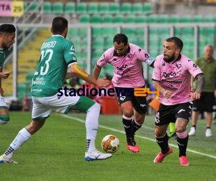 Stadionews