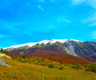 Osservatorio Balcani e Caucaso
