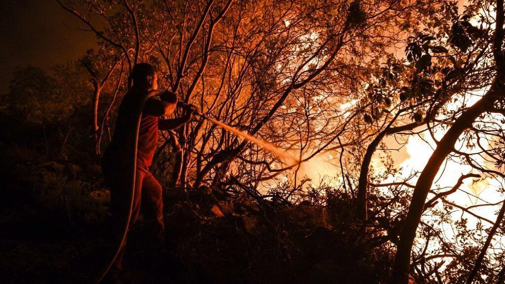 Brucia lEuropa del Sud in fiamme anche la Pineta Dannunziana