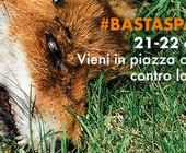 Fonte della foto: Blog di Beppe Grillo