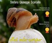 Fonte della foto: PugliaLive