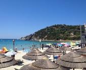 Fonte della foto: La Nuova Sardegna