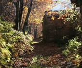 Fonte della foto: Targatocn.it