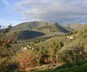 Fonte della foto: Umbria e Cultura