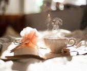 Fonte della foto: Caffè Procope