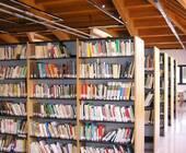 Fonte della foto: www.ivg.it