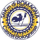 Fonte della foto: CastelbologneseNews