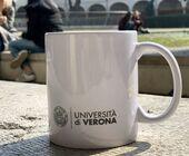 Fonte della foto: Verona Sera
