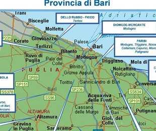 Bari Today