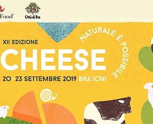 Liguria Notizie