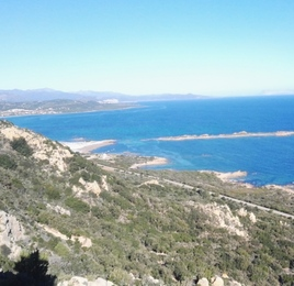 La Nuova Sardegna