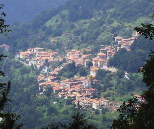 Lucca in Diretta