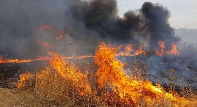 Sicilia in fiamme Draghi firma dpcm arrivano aiuti