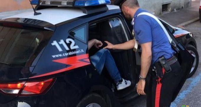 Messina: coltiva piante di cannabis nell'orto, giovane arrestato
