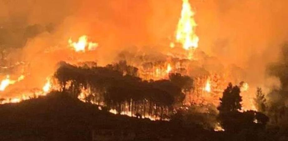 Incendi senza sosta la Sicilia brucia ancora in arrivo gli aiuti dalle altre regioni