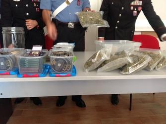 Serre marijuana hi-tech, un arresto