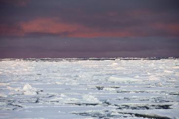 In Groenlandia ghiacci 'rallentano' spostamento verso mare