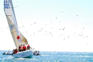 Vela: Audi italian sailing a Porto Cervo