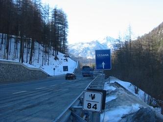 Lupo ucciso su strada statale Val Susa