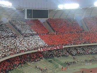 Calcio:cori razzisti, sanzione per Bari