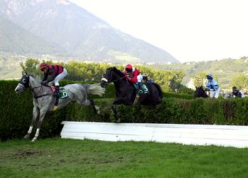 Ippica: Gran Premio a Merano
