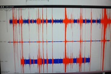 Scossa magnitudo 2,9 a val d'Aveto