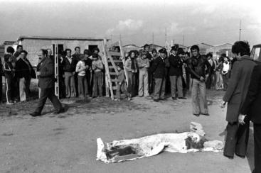 Pasolini: in mostra reperti omicidio