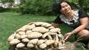 Fungo gigante in Cina