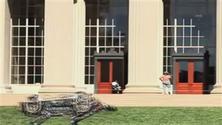 Il ghepardo robot che corre a 50 chilometri orari