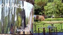 ArborVitae, intervista con A3Paesaggio