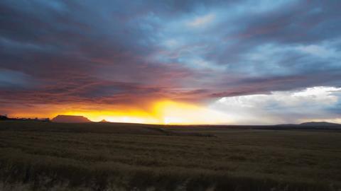 Cape Town: meraviglia della natura