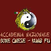 Palestra di Accademia Nazionale Boxe Cinese