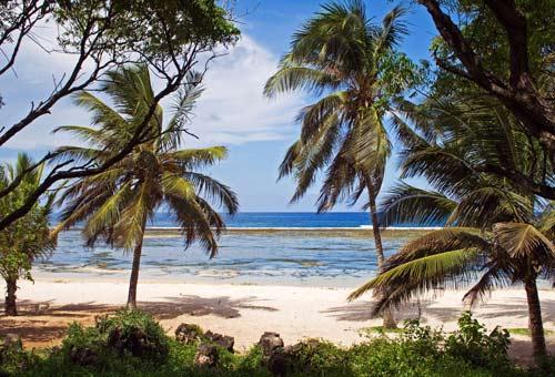 http://img.plug.it/sg/viaggi2008/upload/ken/kenya-tiwi-beach.jpg