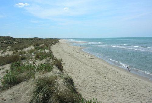 http://img.plug.it/sg/viaggi2008/upload/spi/0005/spiaggia_del_gombo-wiki-taccolamat.jpg