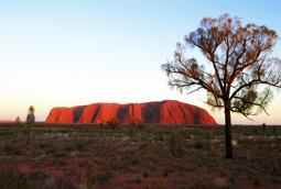 Uluru sunrise viewing area, Central Australia HD