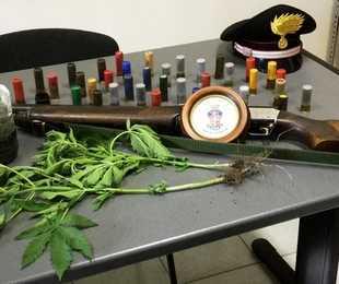 Un fucile e tre piante di cannabis in casa: denunciati padre e figlio