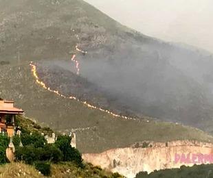 Incendi Palermo provincia Prefettura 'Impegnati 200 uomini 48 ore'