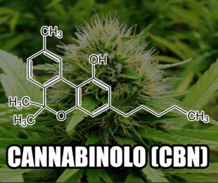 Combattere lo stress con la cannabis: benefici dell'olio al CBD