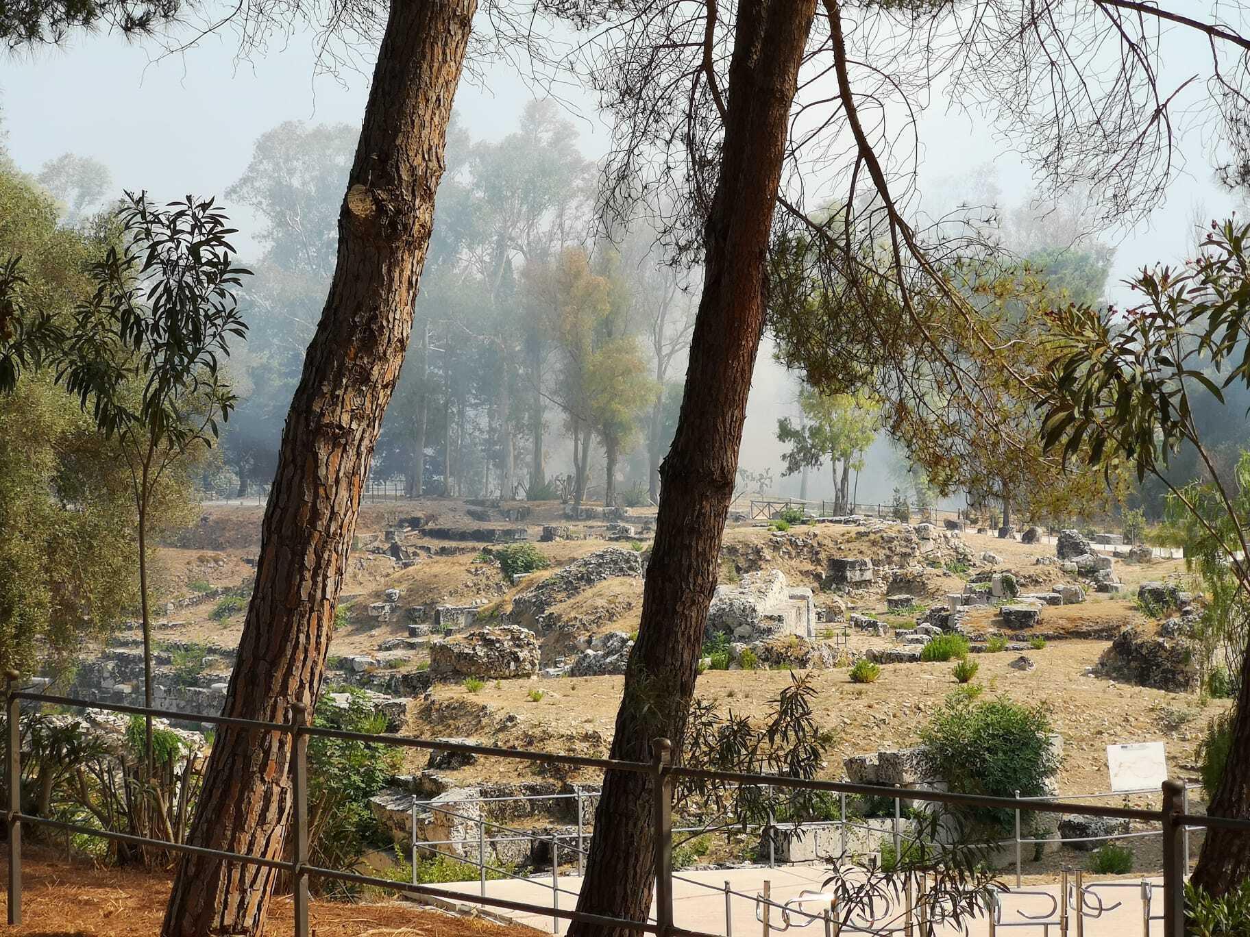 Siracusa Incendio al parco archeologico della Neapolis