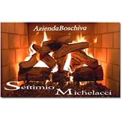 Azienda Boschiva Michelacci Settimio